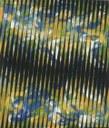Die Raute (2004)